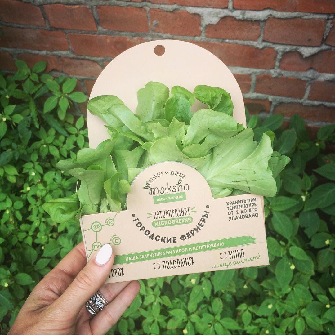 Коробочки для зелени
