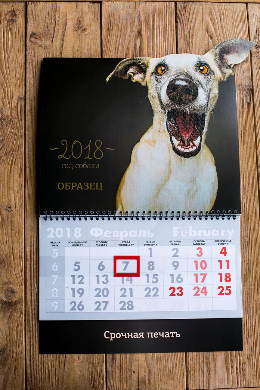 Календарь трио собака